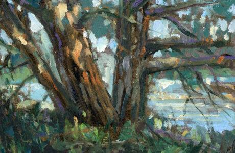 tree, Jared Shear, art, oil painting, landscape, Montana